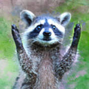 Let Me In I'm Rocky Raccoon Art Print