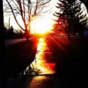 Let The Sun Light Your Path Art Print