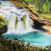 Lewis River Falls Art Print