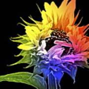 Life Is Like A Rainbow ... Art Print by Gwyn Newcombe