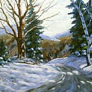 Light Breaks Through The Pines Art Print