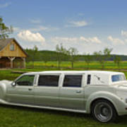 Light Limousine In The Meadow Art Print