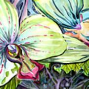 Light Of Orchids Art Print