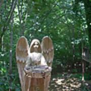 Light On The Angel In My Backyard Art Print