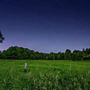 Light Show - Fireflies Vs The Stars Art Print