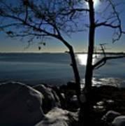 Light Snow And Stillness Art Print