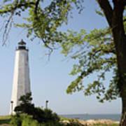 Lighthouse Summer Art Print