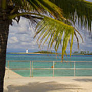 Lighthouse Under Palm In Bahamas Art Print