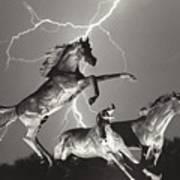 Lightning At Horse World Art Print