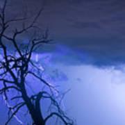 Lightning Tree Silhouette 38 Art Print