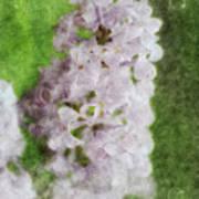Lilac Dreams - Digital Watercolor Art Print