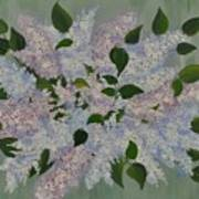 Lilac Flowers Expressing Harmony Art Print