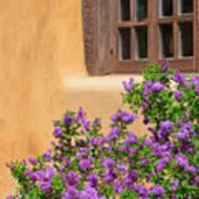 Lilacs And Adobe Art Print