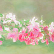Lilacs In Sunshine Art Print