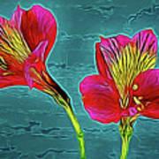 Lilies 18-10 Art Print