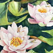 Lilies And Dragonflies Art Print