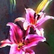 Lilies At Night Art Print