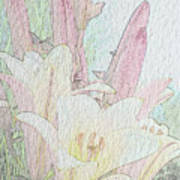 Lilies. Flowers And Buds. Art Print