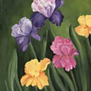 Lill's Garden Art Print