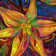 Lily In Abstract Art Print