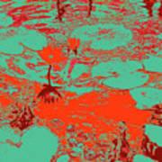 Lily Pads And Koi 35 Art Print
