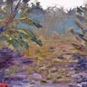 Lily Pads On A Pond, Overcast Sky 3pm Art Print