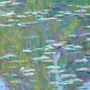 Lily Pond 2 Art Print