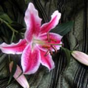 Lily Stem On Green Brocade Art Print