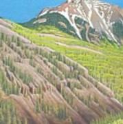 Lime Creek Canyon Art Print