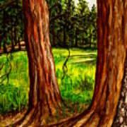 Lime Meadow Art Print