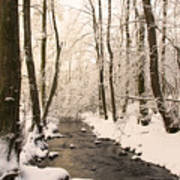 Limentra In Winter Art Print