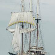 Limited Sails Art Print