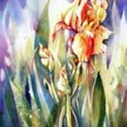 Linda's Iris Art Print