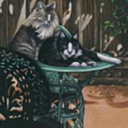 Linda's Patio Cats Art Print