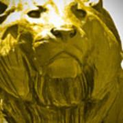 Lion Gold Art Print
