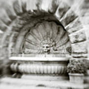 Lion Head Fountain Art Print