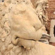 Lion Head In Venice Art Print