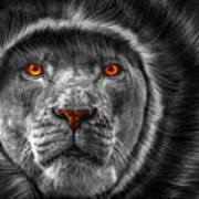 Lion Lady   -3 Art Print
