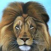 Lion - The Majesty Art Print