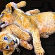 Lion Wrestling Art Print