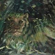 Lioness' Den Art Print
