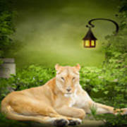 Lioness Dream Art Print
