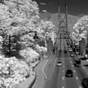 Lions Gate Bridge Summer Art Print
