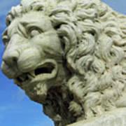 Lions Roar Art Print