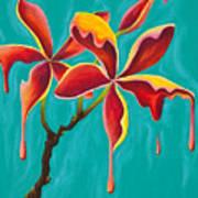 Liquidia Plumeria Art Print