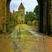 Lismore Castle Gate Art Print