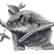 Little Brown Bat Art Print