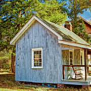 Little Cabin In The Country Pine Barrens Of New Jersey Art Print