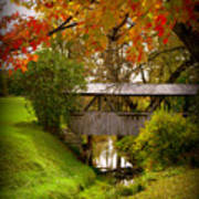 Little Covered Bridge Art Print by Trina Prenzi