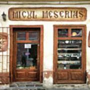 Little Craftsman' Shop - Micul Meserias Art Print